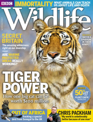 BBC Wildlife Apr 2016