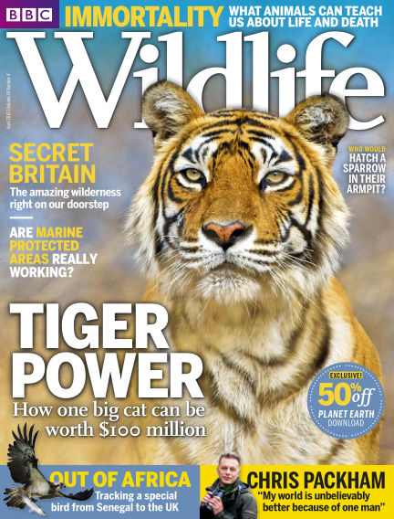 BBC Wildlife March 16, 2016 00:00