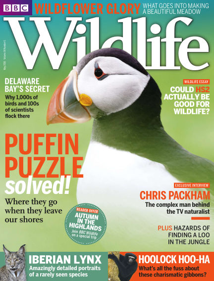 BBC Wildlife May 11, 2016 00:00