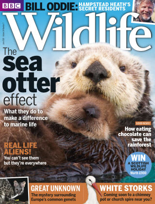 BBC Wildlife June 2016