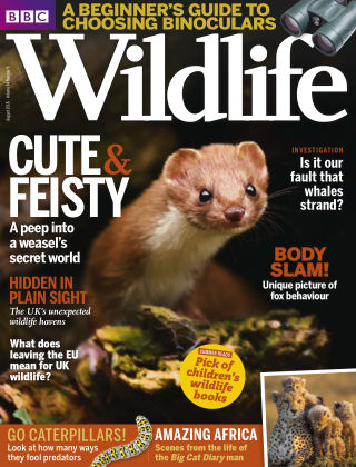 BBC Wildlife Aug 2016