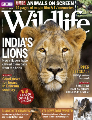 BBC Wildlife Jan 2017