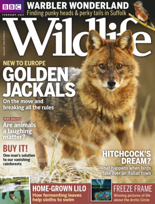 BBC Wildlife Feb 2017