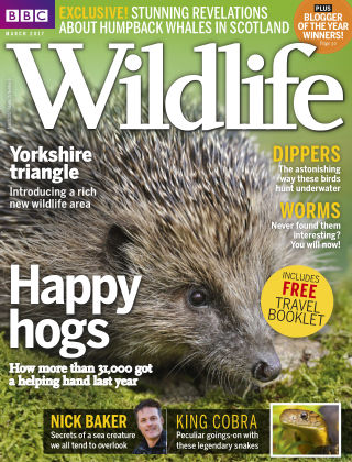 BBC Wildlife Mar 2017