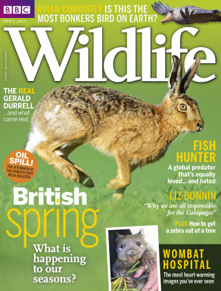 BBC Wildlife Apr 2017