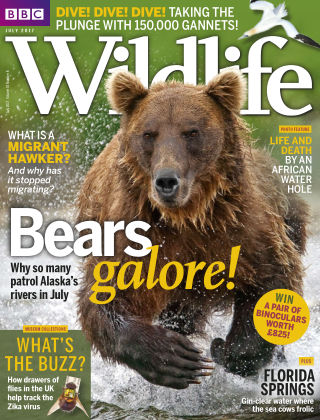 BBC Wildlife July 2017