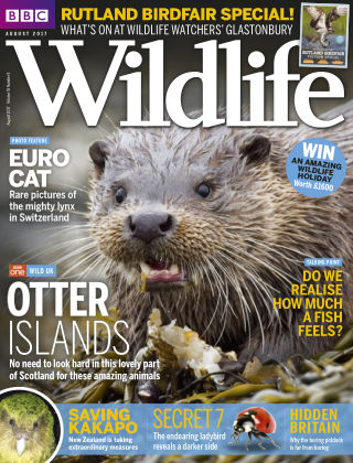 BBC Wildlife August 2017