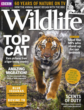 BBC Wildlife September 2017