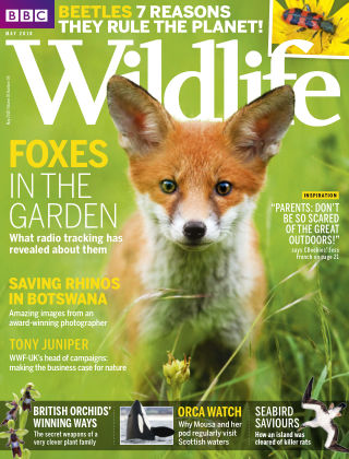 BBC Wildlife May 2018