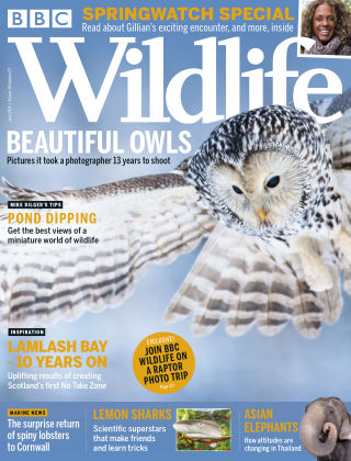 BBC Wildlife June 2018