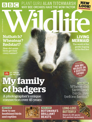 BBC Wildlife July 2018
