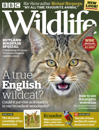 BBC Wildlife August 2018