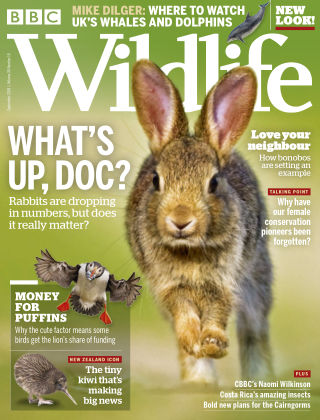 BBC Wildlife September2018