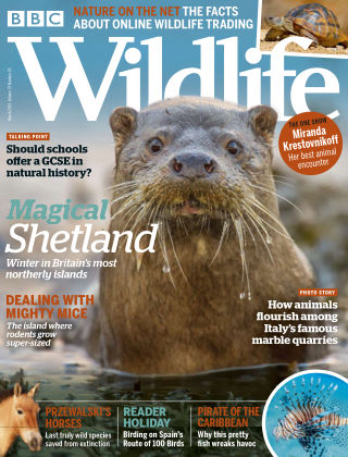 BBC Wildlife March2019