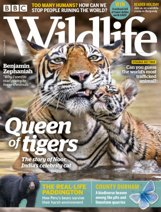 BBC Wildlife May2019