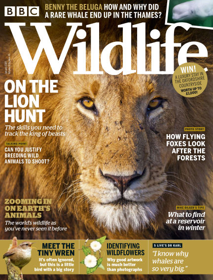 BBC Wildlife December 19, 2018 00:00