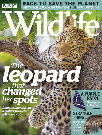 BBC Wildlife July 04, 2019 00:00