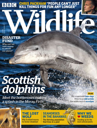 BBC Wildlife June2019