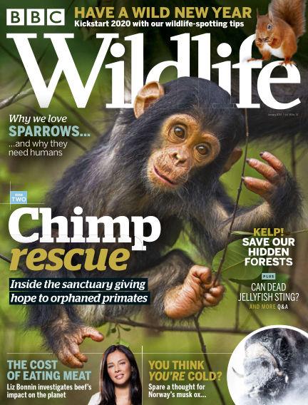 BBC Wildlife December 19, 2019 00:00