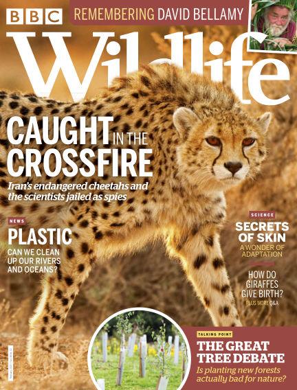 BBC Wildlife January 16, 2020 00:00