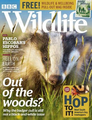 BBC Wildlife Spring2020