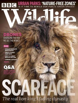 BBC Wildlife August2020
