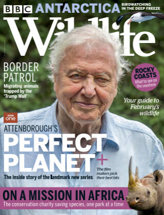 BBC Wildlife February2021