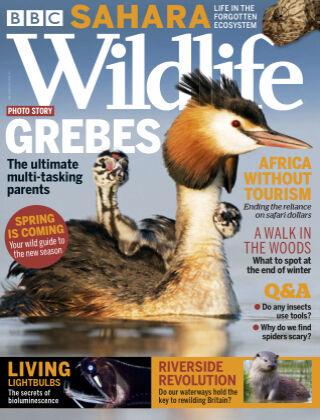 BBC Wildlife March2021