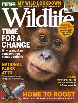 BBC Wildlife April2021