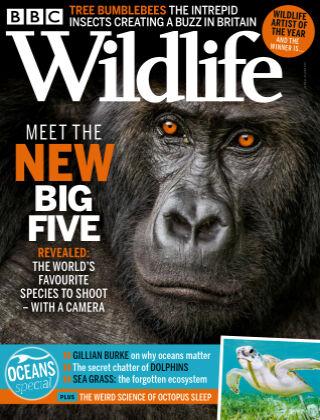 BBC Wildlife June2021