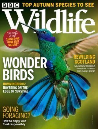 BBC Wildlife September2021
