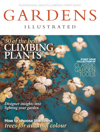 Gardens Illustrated November 2014