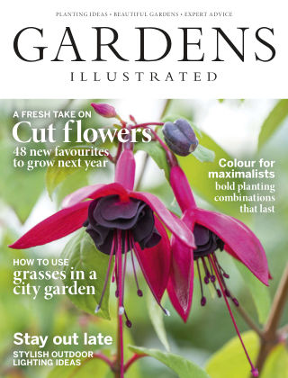 Gardens Illustrated November2018