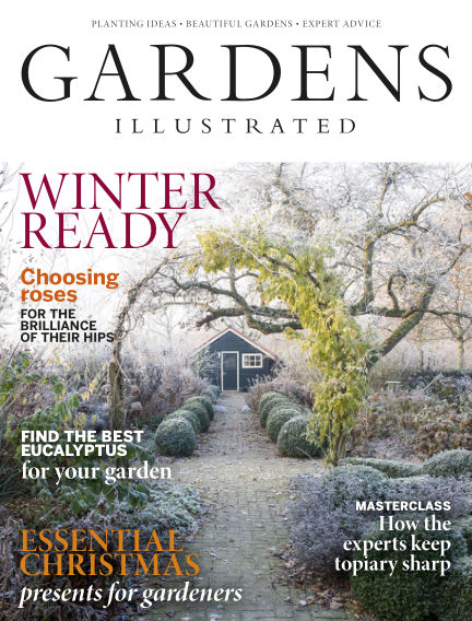 Gardens Illustrated November 08, 2018 00:00