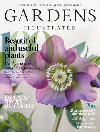 Gardens Illustrated January2020