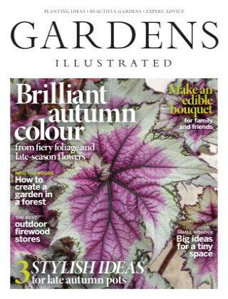 Gardens Illustrated November2020