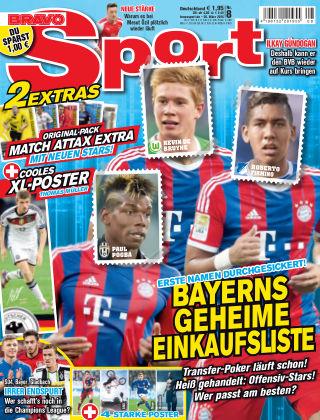 Bravo Sport NR.8 2015
