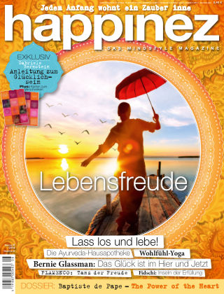Happinez - DE NR.8 2014