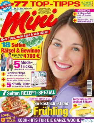 Mini NR.17 2017