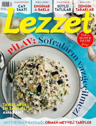 Lezzet April 2017