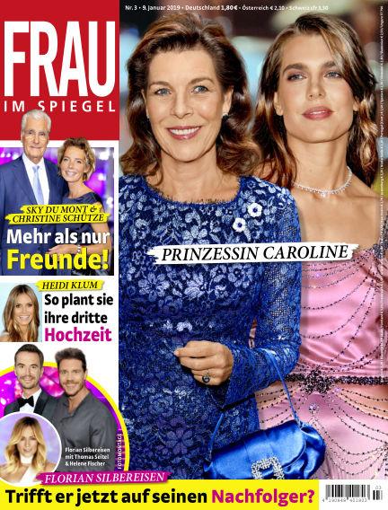 Frau im Spiegel January 09, 2019 00:00