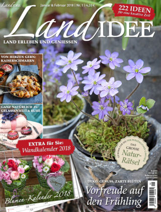 LandIDEE NR01-2018