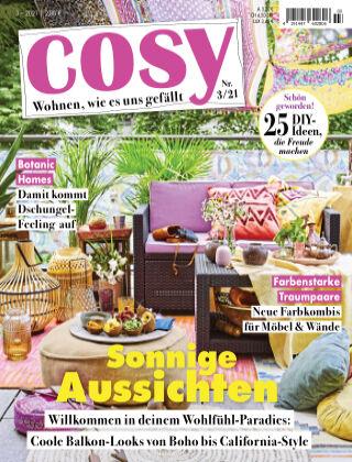 COSY NR03-co