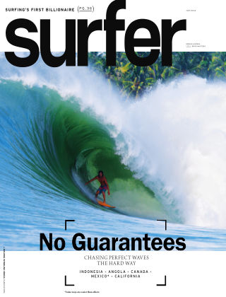 Surfer January 2014