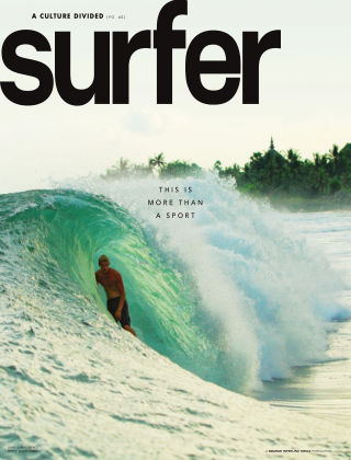 Surfer November 2013