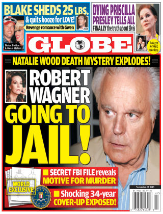 Globe Nov 23 2015