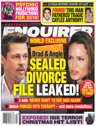 National Enquirer Dec 31 2018
