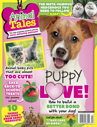 Animal Tales Oct 2019