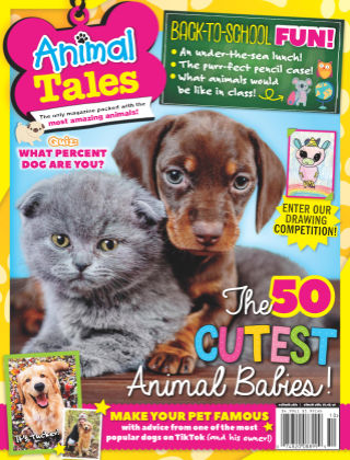 Animal Tales October 2020