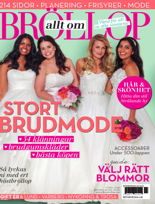 Allt om Bröllop 2013-09-10